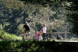Conflict on Marin County trails returns to spotlight - Photo