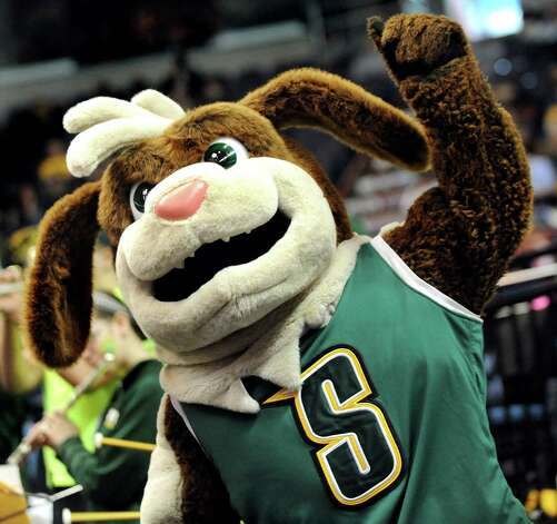 "Siena's mascot ""Bernie"" cheers for the Saints during their quarterfinal game against Iona in the MAAC Championship on Saturday, March 7, 2015, at Times Union Center in Albany, N.Y. (Cindy Schultz / Times Union) Photo: Cindy Schultz / 00030912A"