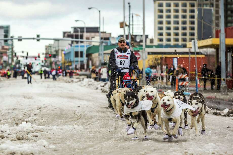 Musher Chuck Schaeffer and his team charge along a street in Anchorage, Alaska. Snow had to be trucked in for the ceremonial start of the Iditarod on Saturday, but it has snowed in Fairbanks, where the race begins. Photo: Loren Holmes / Associated Press / Alaska Dispatch News