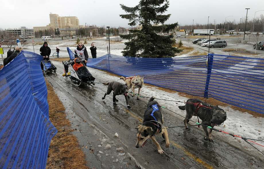 Musher Katherine Keith jogs her team up the snow less ramp to the bridge over Tudor Road during the ceremonial start of the 2015 Iditarod sled dog race in Anchorage, Alaska, on Saturday March 7, 2015. (AP Photo/Alaska Dispatch News, Bob Hallinen)  KTUU-TV OUT; KTVA-TV OUT; THE MAT-SU VALLEY FRONTIERSMAN OUT Photo: Bob Hallinen, Associated Press