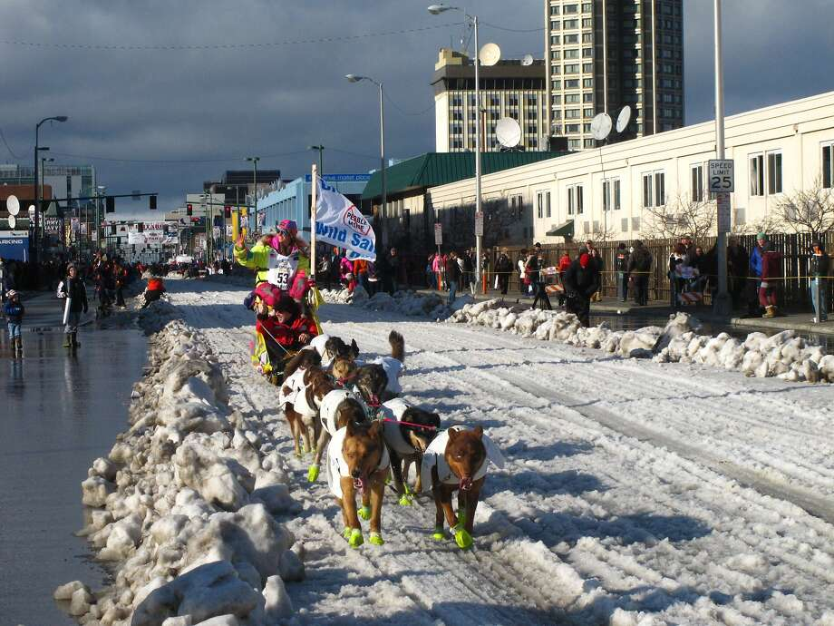 Musher Monica Zappa of Kasilof, Alaska, leads her team past spectators Saturday, March 7, 2015, during the ceremonial start of the Iditarod Trail Sled Dog Race in Anchorage, Alaska. The official start is Monday in Fairbanks, where the race was moved because of a lack of snow to the south. (AP Photo/Rachel D'Oro) Photo: Rachel D'Oro, Associated Press