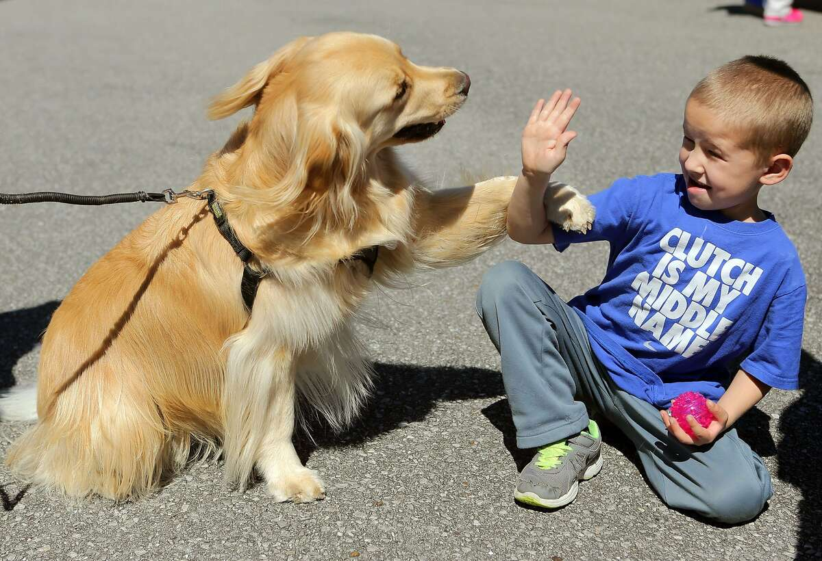 THAT AWKWARD MOMENT WHEN YOU DON'T KNOW WHETHER TO SHAKE OR HIGH-FIVE: Jackson Parish makes a new friend during DogFest at Frank Brown Park in Panama City Beach, Fla.