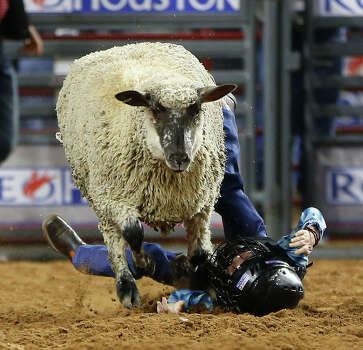 Mutton Busting Is Serious Business At Rodeohouston