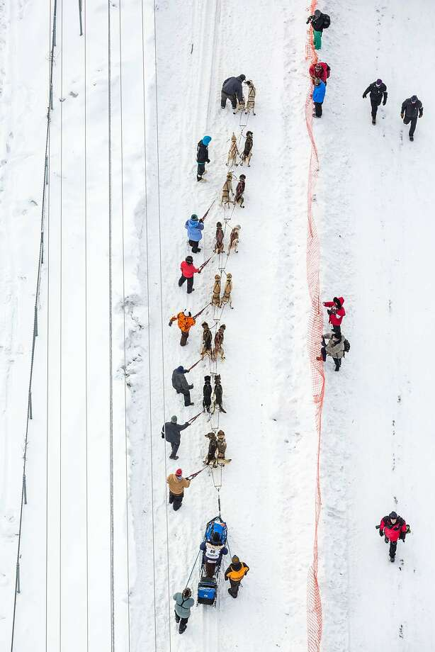 Musher Timothy Hunt waits for his turn near the start area during the Iditarod Trail Sled Dog Race, Monday, March 9, 2015, in Fairbanks, Alaska. Iditarod mushers began their 1,000-mile trek across Alaska along a new route Monday after poor trail conditions forced organizers to push the race's start north, bypassing a mountain range. (AP Photo/Alaska Dispatch News, Loren Holmes) Photo: Loren Holmes, Associated Press
