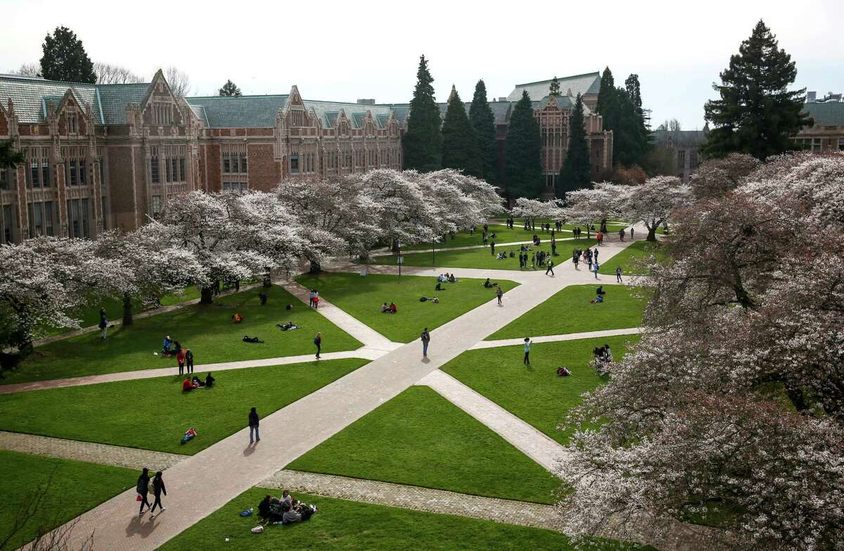 The quad is shown as Yoshino cherry trees bloom at the University of Washington. The trees were planted in 1939 at the Washington Park Arboretum and were later relocated to the quad on the UW campus when the Evergreen Point Floating Bridge was built. The blooms have not yet peaked but are adding plenty of color to the UW campus. Photographed on Tuesday, March 10, 2015.