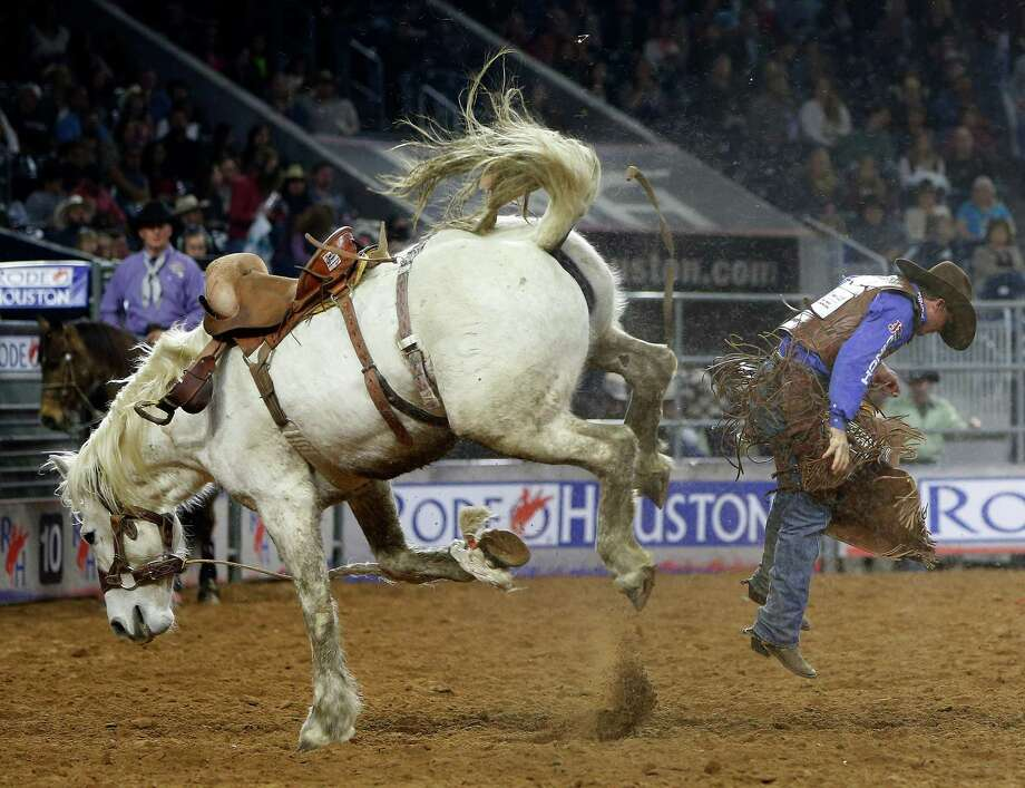 Cody DeMoss is bucked off of Snow White in the saddle bronc riding competition during the Houston Livestock Show and Rodeo at NRG Park, Tuesday, March 10, 2015, in Houston. Photo: Karen Warren, Houston Chronicle / © 2015 Houston Chronicle