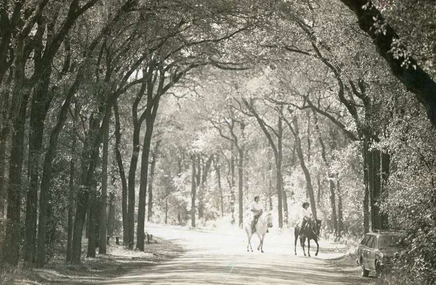 A couple enjoy a ride on horseback through Brackenridge Park in June of 1978.