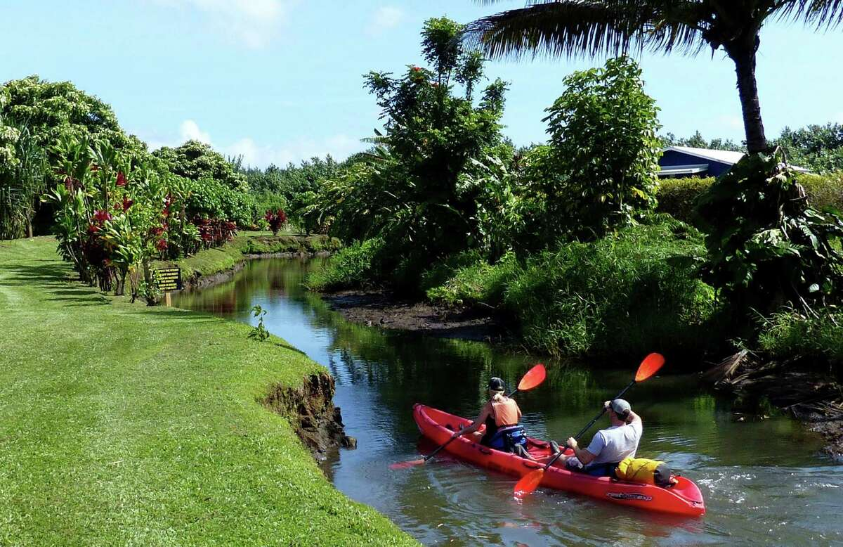 The launching stream at Kayak Hanalei feeds into the lazy Hanalei River.
