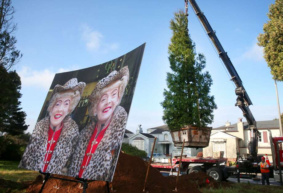 A tree honoring famed twin Marian Brown (seen on the right in the photo), who died last year, is planted in a park on Sloat Boulevard in San Francisco, Calif. on Wednesday, March 11, 2015. The California incense cedar was planted next to another one that was planted in honor of Marian's twin sister Vivian, who passed away in 2013. Photo: Paul Chinn, The Chronicle