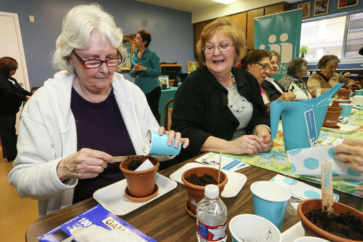 Janice Thompson (second from left), assistant managerat the Christian Village Apartments, 5800 Wurzbach, watches as Jennifer Mullinax (left) plants basil seeds in a program sponsored by Molina Healthcare of Texas.