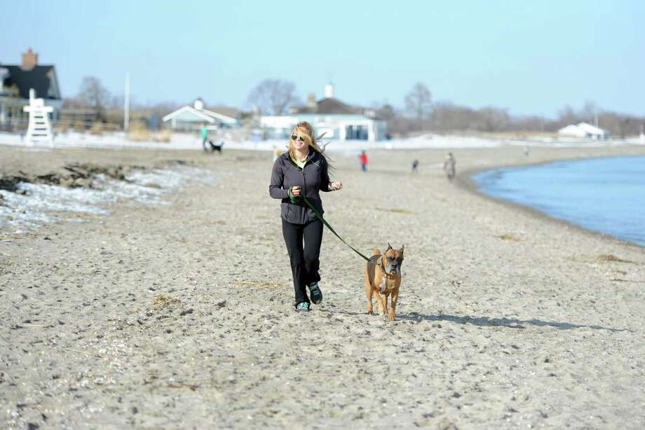 Juliana Kushnir, of Easton, walks her dog Banks at Penfield Beach in Fairfield on a sunny Wednesday, Mar. 11, 2015. Temperatures reached the upper 50s Wednesday and warm weather will continue through the rest of the week. Photo: Autumn Driscoll / Connecticut Post