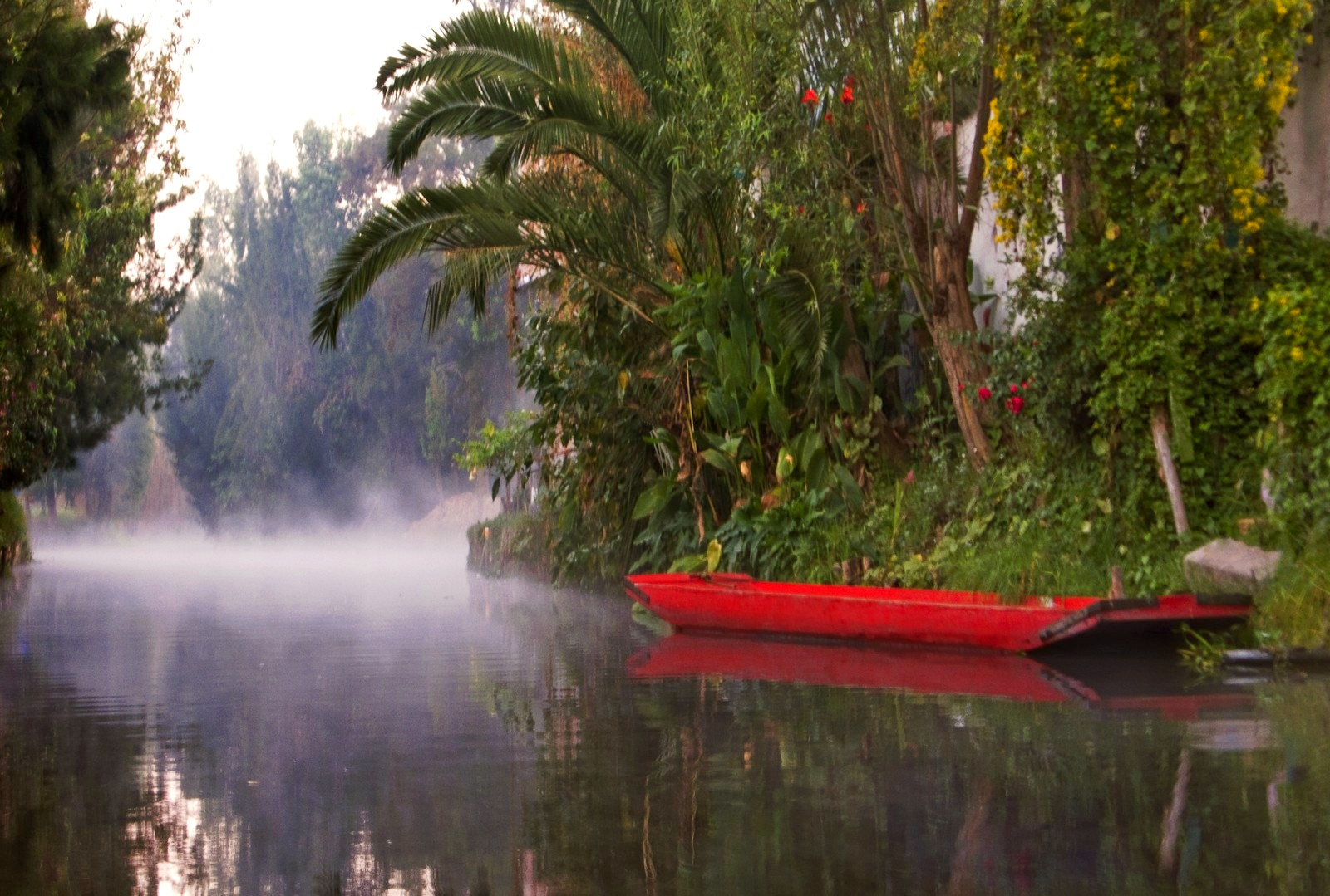 The stunning ancient canals of Mexico City's Xochimilco