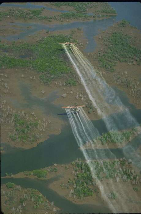 Air Force planes sprayed Agent Orange by the millions of gallons over Vietnam. Photo: Dick Swanson, Getty Images / Dick Swanson