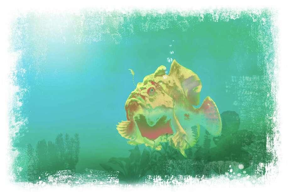 Frog Fish illustration Robert Wuensche illustration / Houston Chronicle