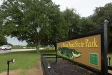 A vehicle drives by in the Brazos Bend State Park on Friday, Sept. 12, 2014, in Needville. ( J. Patric Schneider / For the Chronicle )