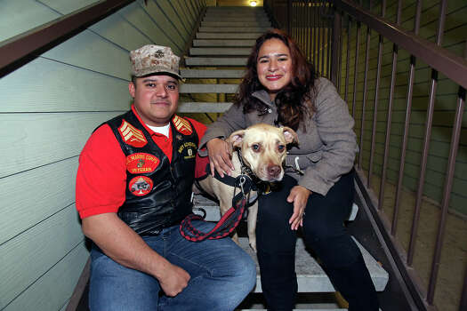Juan Alonzo-Miranda sits with his service dog Goldie and his wife Ilsa Alonzo at home on November 2013. Alonzo-Miranda has sued Schlumberger Technology over whether the company failed to follow federal law dealing with such requests for use of a service dog. Photo: Express-News File Photo / San Antonio Express-News