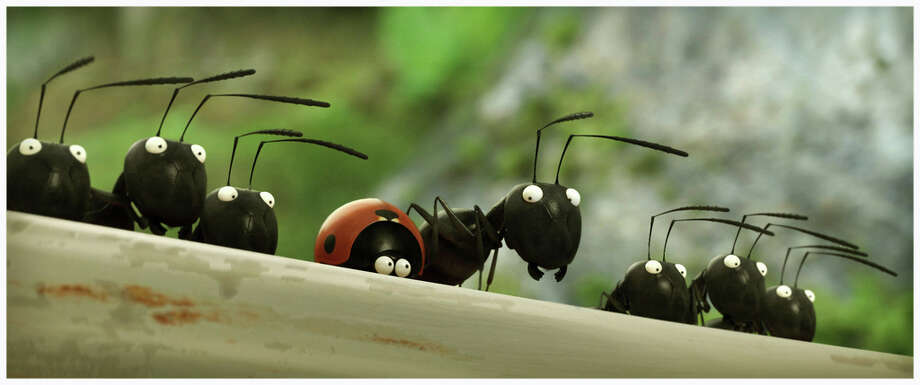 "A family film, ""Minuscule: Valley of the Lost Ants,"" will be among the films screened during the Focus on French Cinema which begins Friday, March 27, 2015. In this film, a picnic riles up two rival ant gangs who have their eyes on a box of sugar. Photo: Contributed Photo / Stamford Advocate Contributed photo"