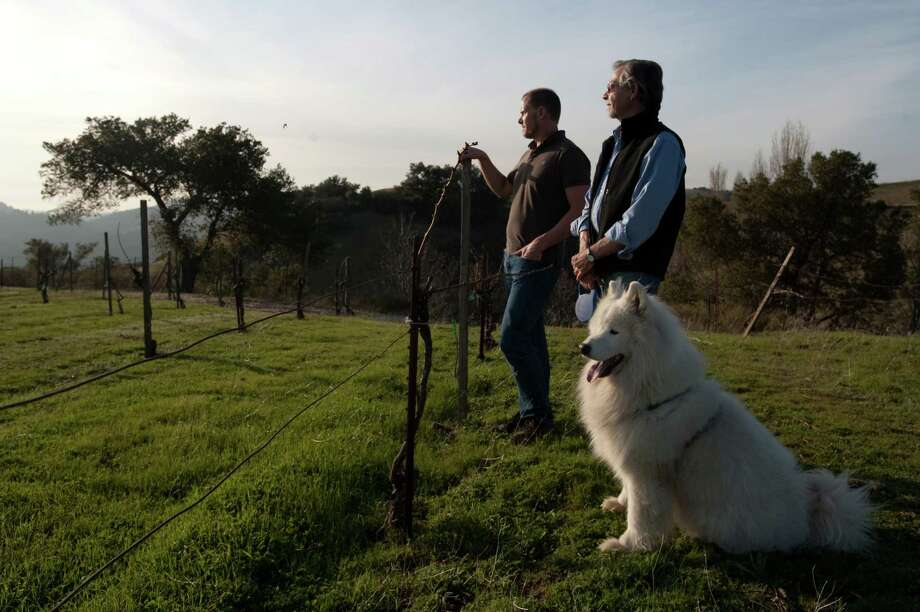 Ridge Vineyards' Paul Draper (right, with his dog Bodhi) and Eric Baugher, vice president of winemaking-Monte Bello, overlook the grounds in 2010. Photo: Chad Ziemendorf / Special To The Chronicle / SFC