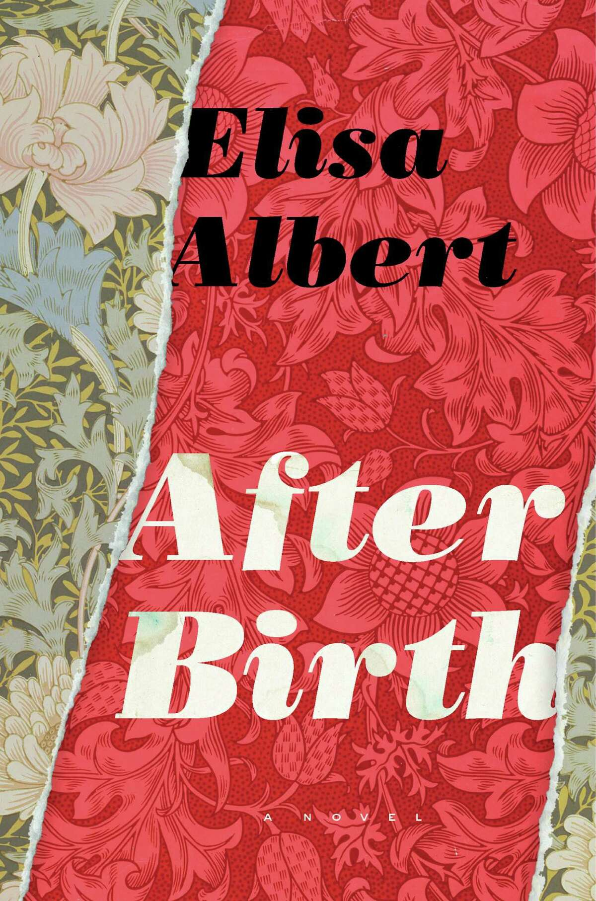 """New motherhood is not always the warm and fuzzy babymoon it's cracked up to be. It certainly isn't in Elisa Albert's new novel, """"After Birth"""" (Houghton Mifflin Harcourt, February 2015). Albert, an Albany resident and former visiting writer at The College of Saint Rose, will read from the novel at the University at Albany on Thursday, March 26, 2015, as part of the New York State Writers Institute program of visiting writers. (Courtesy of the author)"""