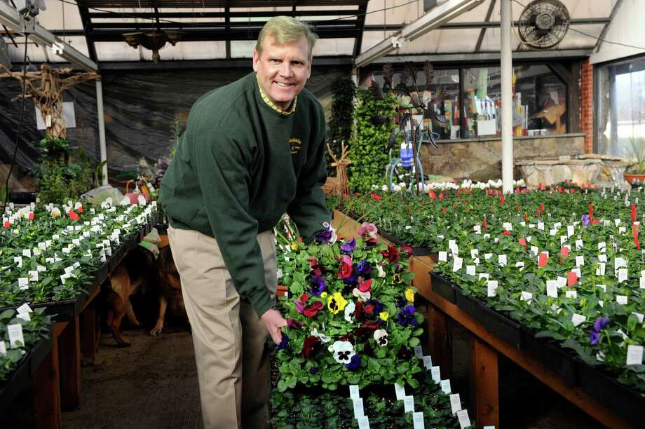 Eugene Reelick owner of Hollandia Nurseries, in Bethel, Conn., holds a tray of petunias in bloom. On either side of him are plants in the early stages of life, Thursday, march 19, 2015. Photo: Carol Kaliff / The News-Times