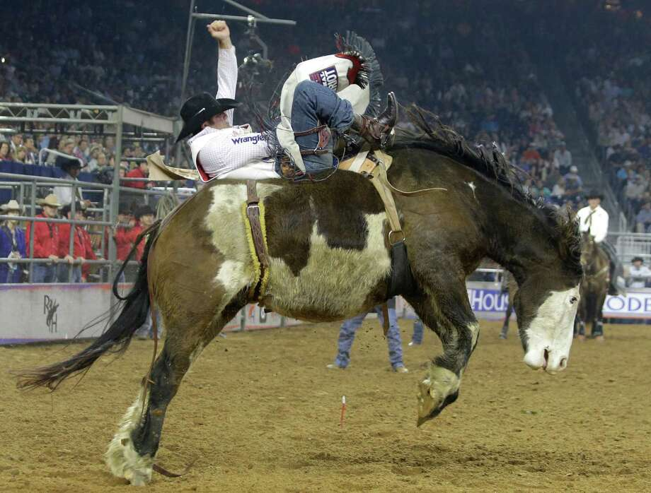 Bareback rider Kaycee Feild, who tied for first place in Thursday's second semifinal, will be trying for his third consecutive title at Rodeo-Houston at NRG Stadium on Saturday. Photo: Melissa Phillip, Staff / © 2014  Houston Chronicle