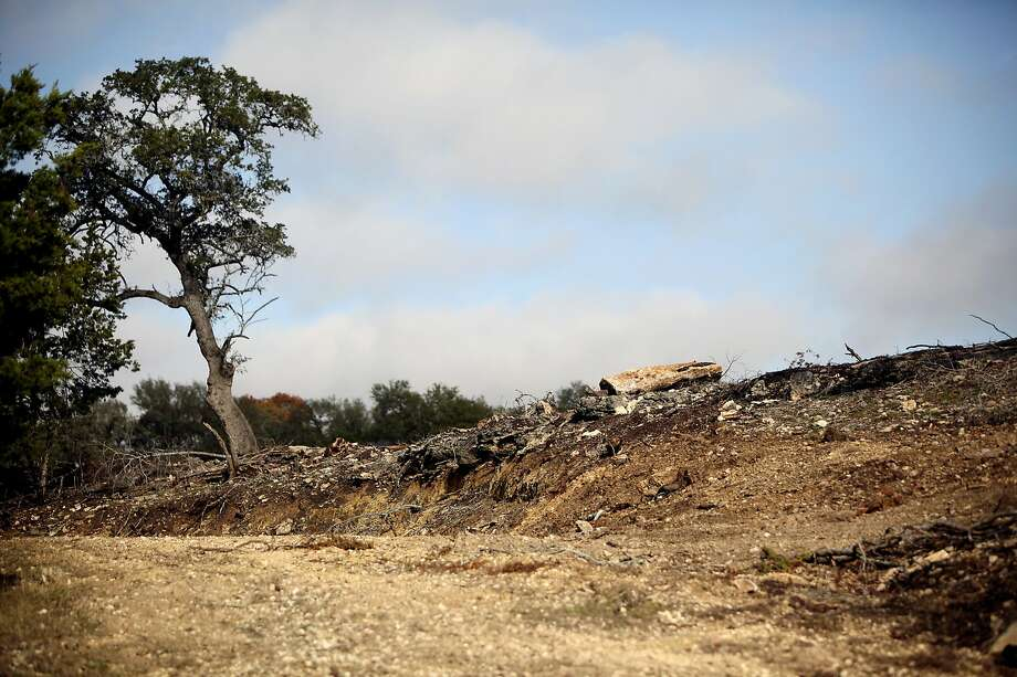 The City of Bulverde recently issued a citation to Balous Miller, who runs Bill Miller Bar-B-Q, for allegedly breaking the city's tree ordinance by having his 19-acre property clear cut. The city council and the planning and zoning commission are meeting in executive session discuss the tree code violation, Tuesday, December 8, 2009. Photo: Shaminder Dulai, Express-News File Photo