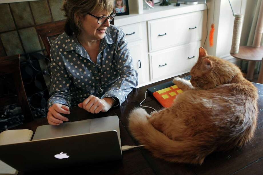 Bonnie McFarland interacts with her cat Julius as he lays on the new cat product Hot Keys in their home in San Francisco, Calif., Friday March 13, 2015. Photo: Sophia Germer / The Chronicle / ONLINE_YES
