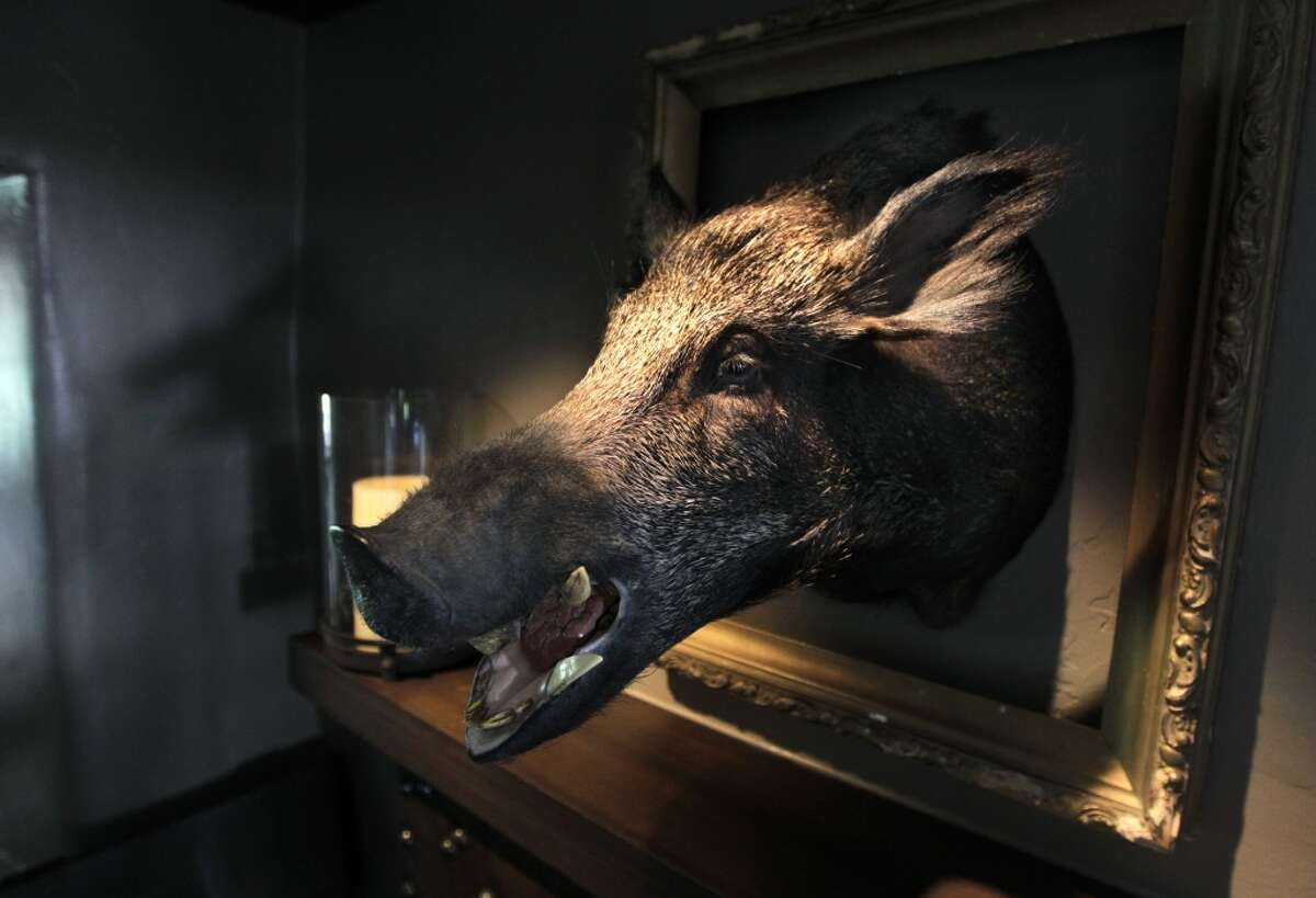 A boar's head presides over the activity in the Gallatin's dining room at Restaurant 1833 in Monterey, Calif. on Tuesday, August 9, 2011. Gallatin was the name of a restaurant which previously occupied the Stokes Adobe, now known as 1833.