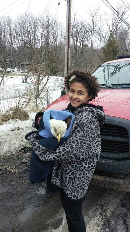 Kallie Ahern of Schuylerville holds the bald eagle that she and her   stepfather, Michael Liotta, rescued after finding it alongside the road Thursday near Schuylerville Central School. The New York State Department of Environmental Conservation came and picked up the eagle to begin rehabilitating its wing. (Photo courtesy of Michael Liotta)