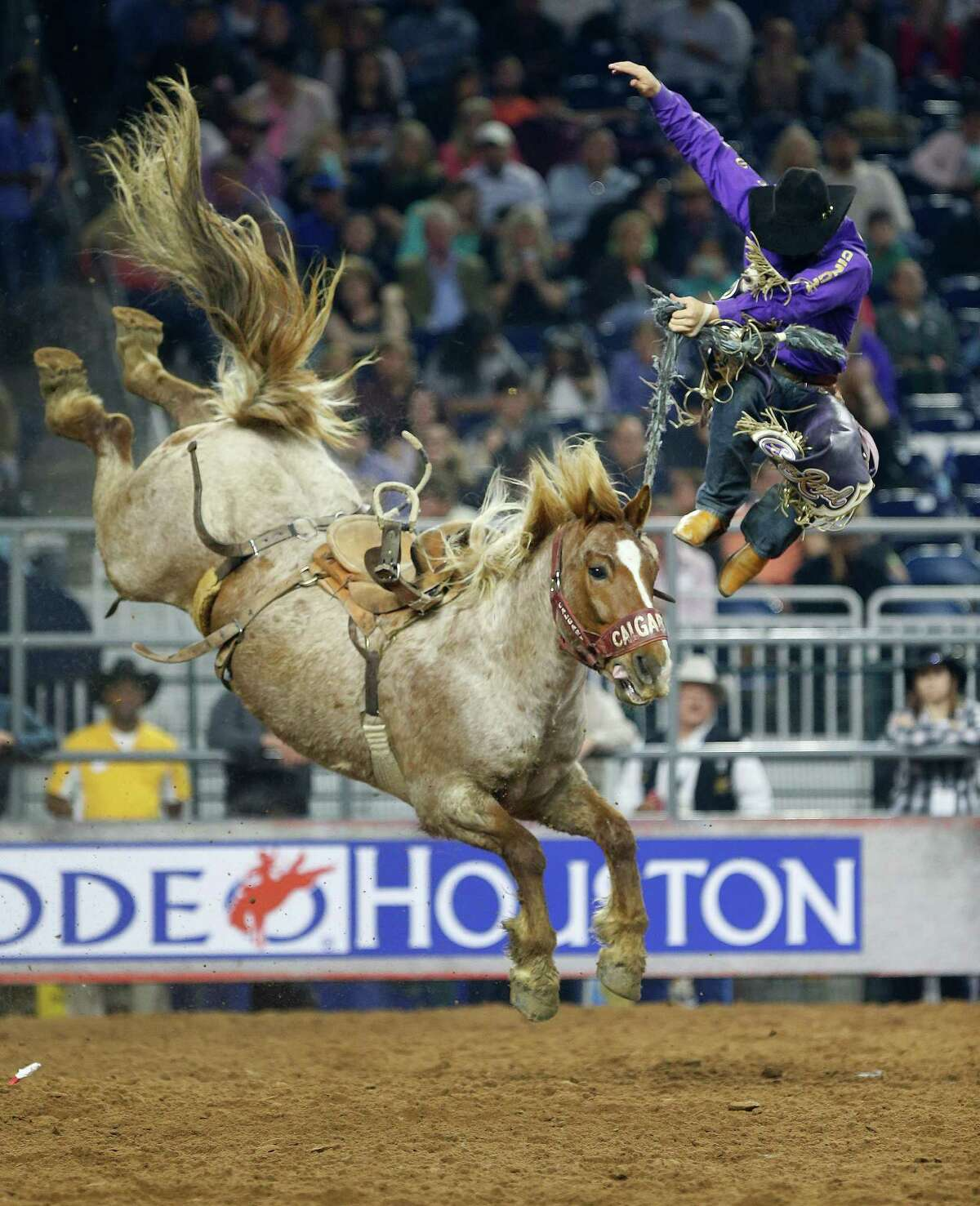Tyler Corrington gets bucked off of Redon Acres during the championship round of the saddle bronc riding competition at the Houston Livestock Show and Rodeo at NRG Stadium, Saturday, March 21, 2015, in Houston.