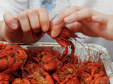 CrawPHish FestivalSaturday, March 28Started as a way to raise awareness of pulmonary hypertension, this event at The Woodlands' Town Green Park will feature live music, kids games and plenty of hot mudbugs.When: 11 a.m.-6 p.m. Where: 2099 Lake Robbins in The WoodlandsTickets: $35 at the gateInformation: woodlandscrawfish.com Photo: James Nielsen, Houston Chronicle / © 2015  Houston Chronicle