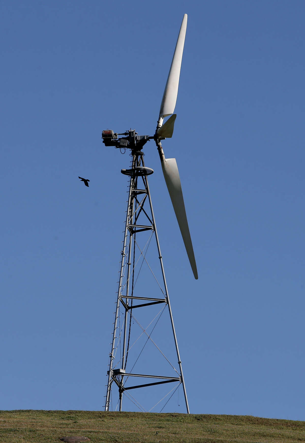 An older-style wind turbine sits off Dyer Road in Livermore. Altamont Winds Inc. wants three more years to replace the turbines that are killing many species of birds.