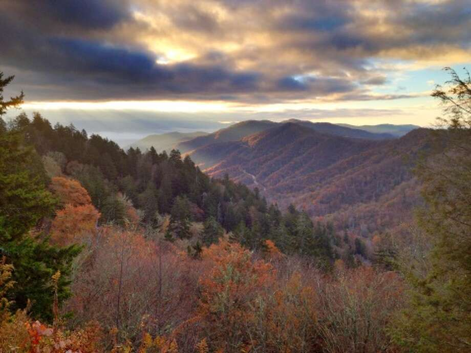 FILE-- Park officials say an autopsy found that a man whose body was discovered being eaten by a bear in Great Smoky Mountains National Park in September died of accidental methamphetamine intoxication, not a bear attack. Photo: Malcolm MacGregor, Getty Images/Flickr Open / Flickr Open