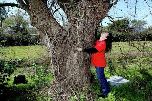 Gina Evans with a tree that she says God called her to on Thursday, February 19, 2015 at  Clear Lake AME Church in , Clear Lake, TX  (Photo: Thomas B. Shea/For the Chronicle)