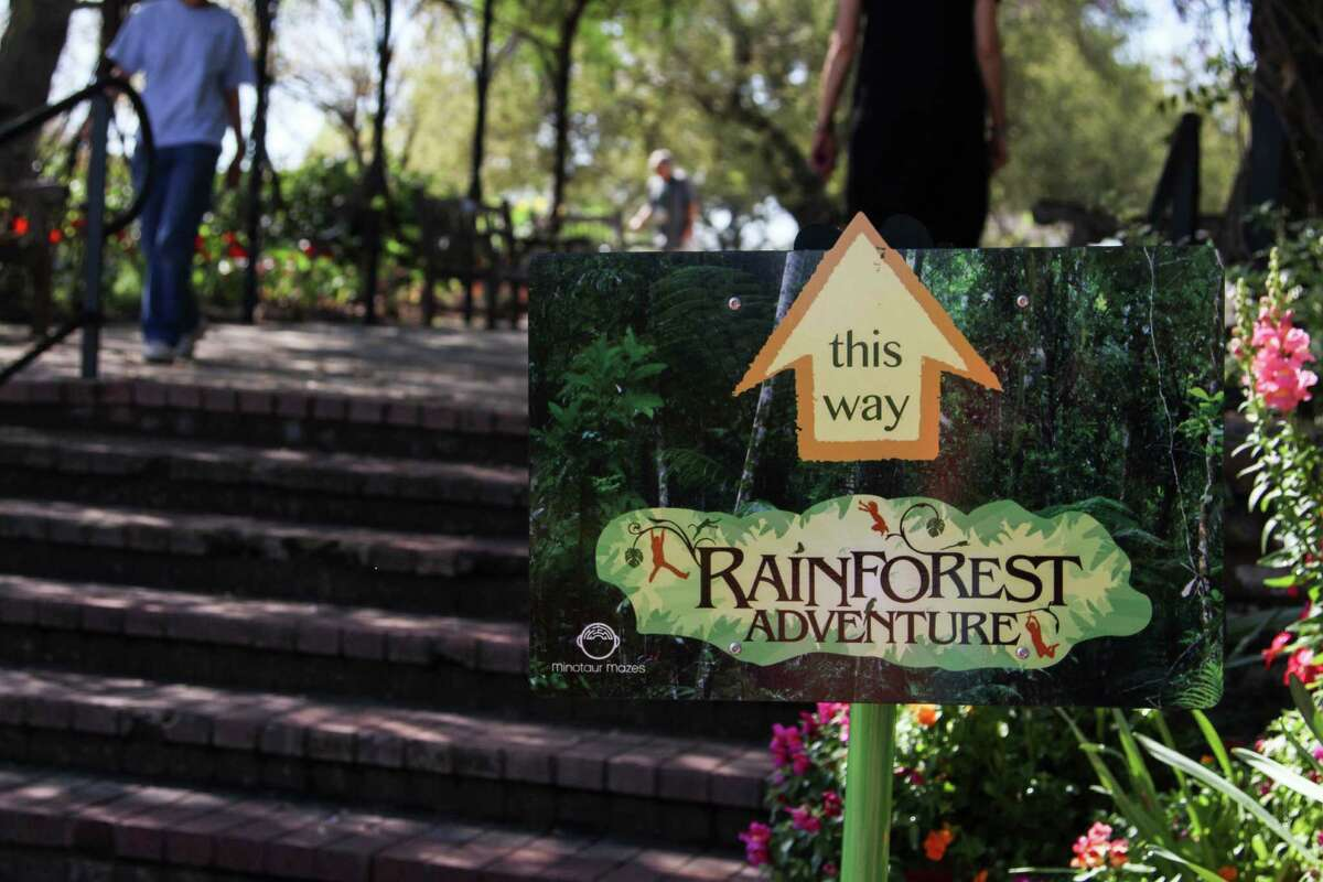 The Rainforest Adventure at the San Antonio Botanical Garden offers an educational look into the wildlife and ecosystem of a tropical rainforest.