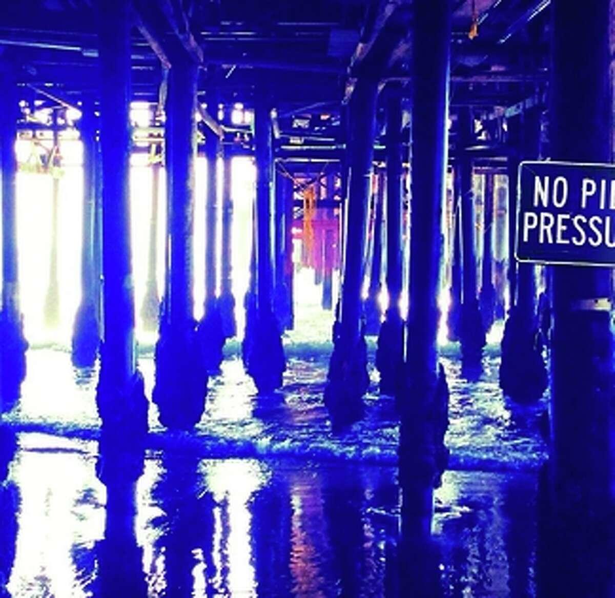 "Brian Wilson, ""No Pier Pressure"""