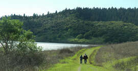 The Shoreline Fire Road runs alongside Lake Hennessey in Napa County. New Moore Creek Park offers additional trails.