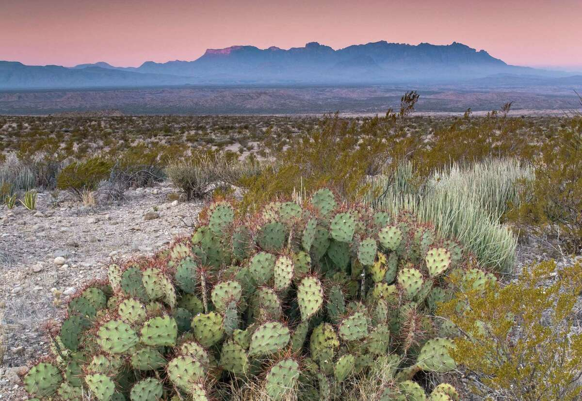 Texas has some beautiful, cinematic deserts. Photo: Chihuahuan Desert in Big Bend National Park