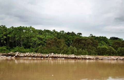Canadian lynched in Peruvian Amazon, accused of killing an