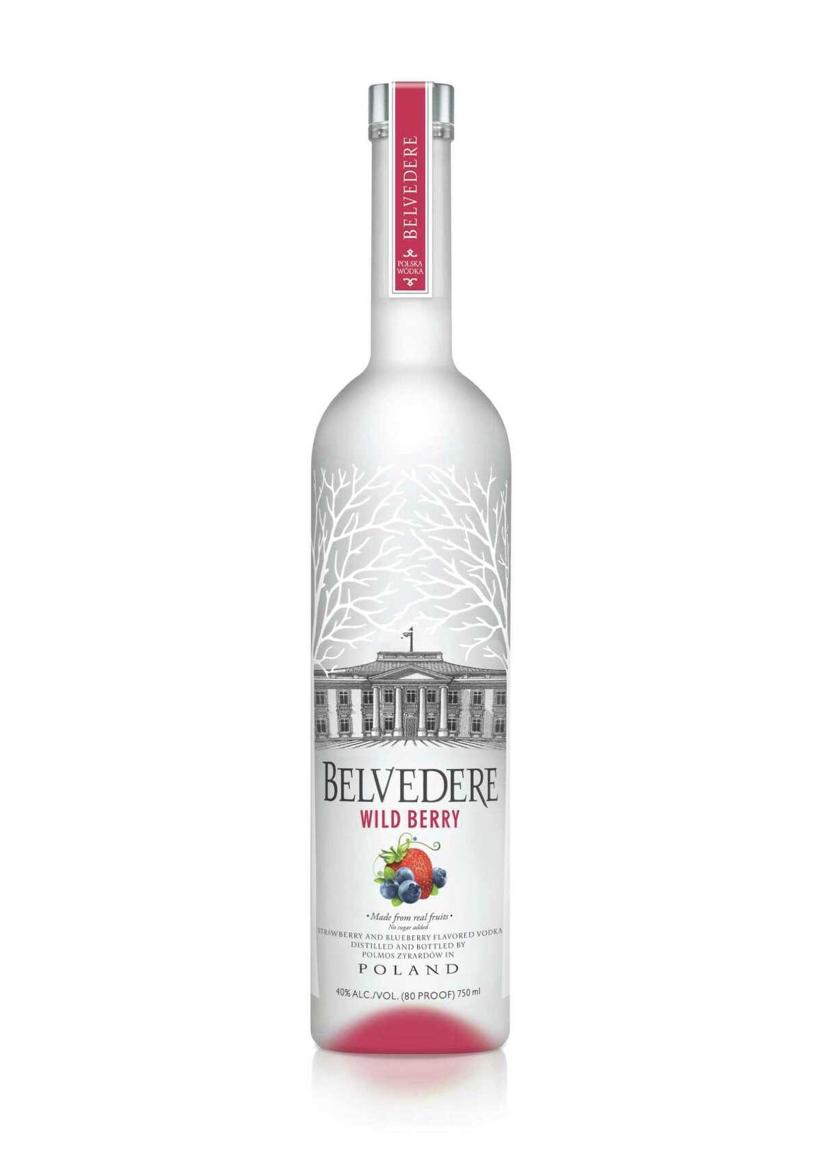 Unopened bottle of Vodka - Padre Island National Seashore
