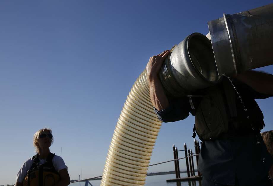 Biologist and Director Trevor Kennedy, right, with the Fishery Foundation of California, removes a transportation tube after unloading Chinook salmon smolts into net pens for acclimation and transportation in the Sacramento River after trucking them in from the Coleman National Fish Hatchery, on March 26, 2015, in Rio Vista, California. This is the second year of a special contingency plan to keep salmon from around the Central Valley alive through the drought. Trucking began on Wednesday, kicking off a two-month effort that will eventually transport 12 million Chinook salmon via trucks down river to ensure their migration into the ocean despite dropping water levels due to the drought. Photo: Leah Millis, The Chronicle