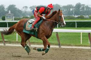 Sherman says California Chrome's ready to run in Dubai - Photo
