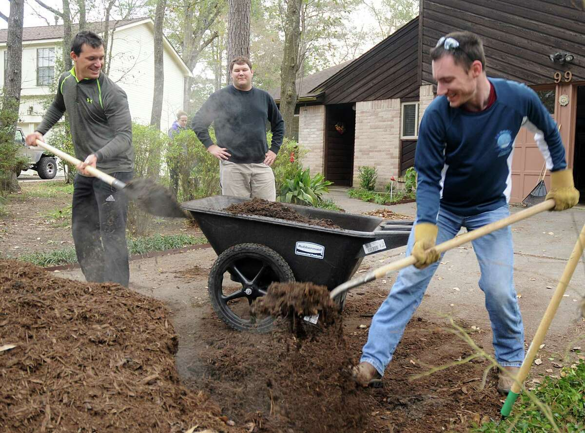 Volunteers Tyson Scott and Christopher Richard fill up a wheelbarrow with mulch, as Jame Bjacek waits to haul the much during the Interfaith of The Woodlands' Serving Our Seniors day of service. More than 200 volunteers worked at 30 elderly homeowners. Volunteers repaired fences, raked leaves, painted, and performed minor home repairs. Photograph by David Hopper