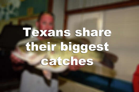 Check out some of the biggest fish to be recently pulled out of Texas waters. Photo: TPWD