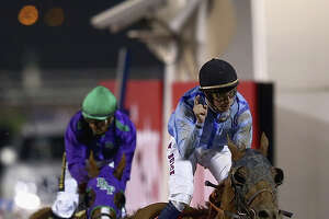 A strong 2nd-place finish for California Chrome in Dubai - Photo