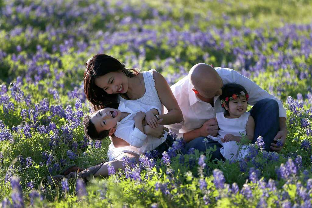 Take bluebonnet photosIs pulling over on the side of the road to take pictures in flowers normal in any other state? Photo: Karen Warren, Staff / © 2015 Houston Chronicle
