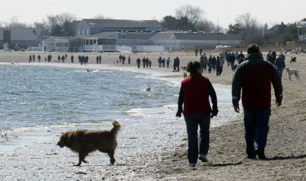 Families, friends and a few canine pets flocked to the Fairfield Beaches, Sunday, March 7, 2010, taking advantage of the break in the winter chill.