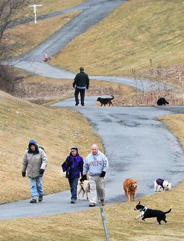 From left, Albany dog owners Ray Moran with Riley and Brooke, Kathy Tarntino with Duncan, and Tom Cairns with Tucker, walk their dogs at Capital Hills at Albany golf course on Tuesday, March 31, 2015 in Albany, N.Y.  (Lori Van Buren / Times Union) Photo: Lori Van Buren