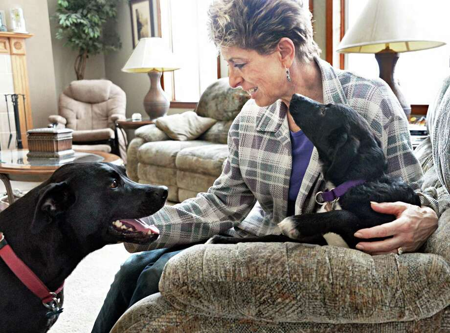 Andrea Salisbury and her dogs Reggie, left, and newly adopted Mishka, a 4 1/2-month-old lab whippet mix rescued from Sochi, Russia, at her home Saturday, March 28, 2015, in Delanson, NY.  (John Carl D'Annibale / Times Union) Photo: John Carl D'Annibale / 00031216A