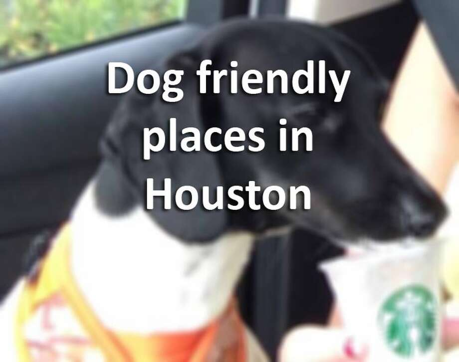 Looking for a fun 